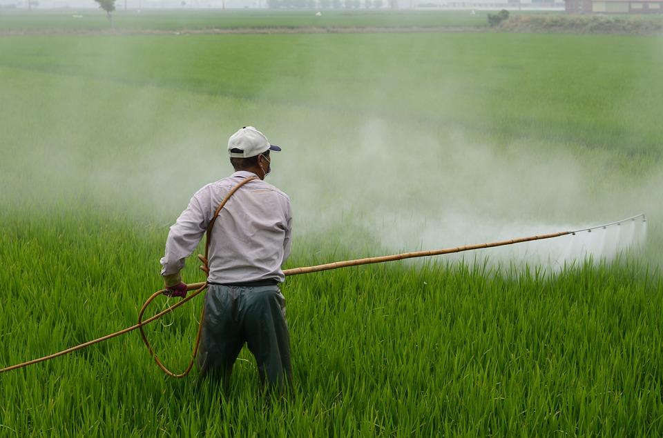 Pesticides / Пестициды